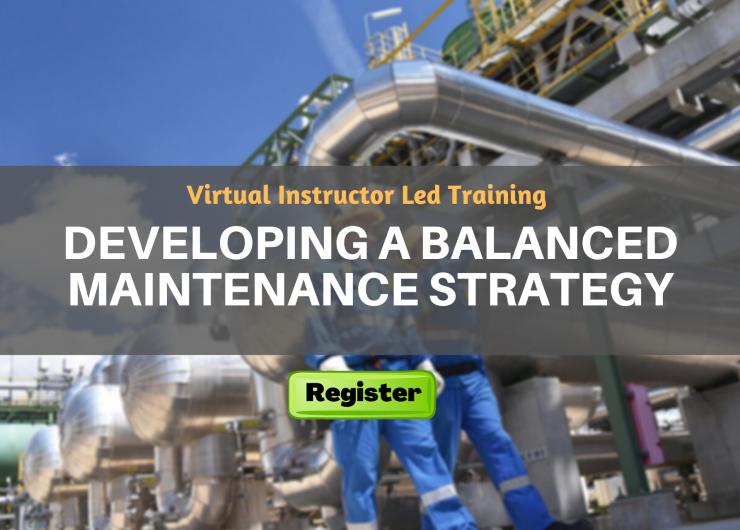 Developing a Balanced Maintenance Strategy (VILT)