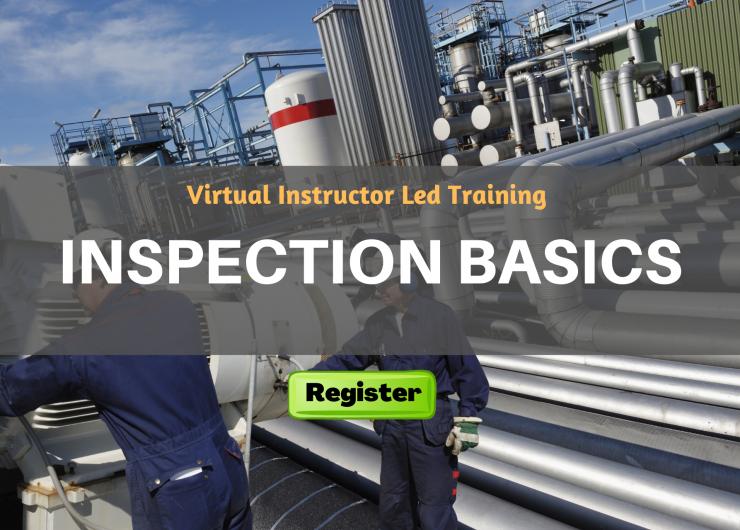 Inspection Basics (VILT)