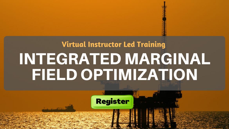 Integrated Marginal Field Optimization (VILT)