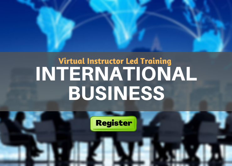 International Business (VILT)