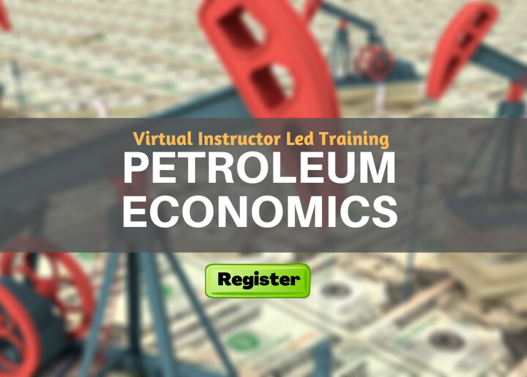 Petroleum Economics (VILT)